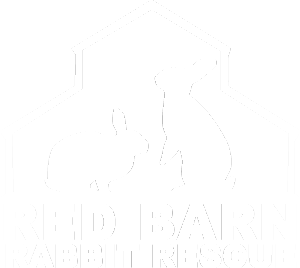 Red Barn Rabbit Rescue